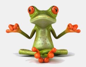 Duda-Mobile-Frog