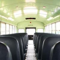 El liderazgo, el autobús y las pulgas